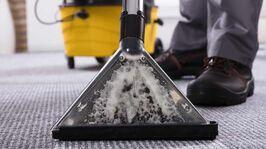 brisbane carpet cleaning