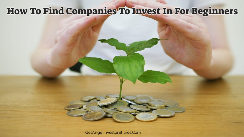 How To Find Companies To Invest In For Beginners